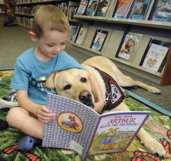 Boy reading to dog image